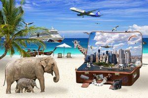 Weltreise- Planung