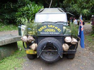 Mr Hope Less, Raro Safari Tours